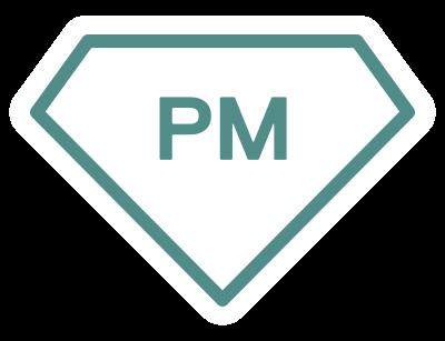 Projectmanagement icon